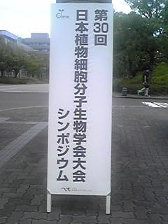 PA0_0000_20120806210716.jpg