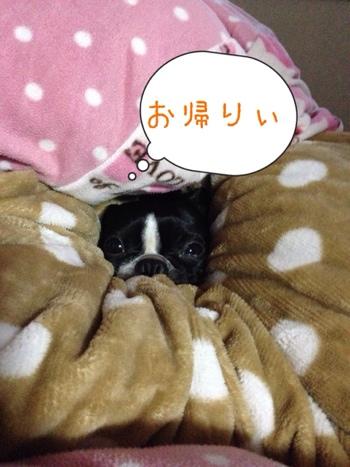 fc2blog_201401090707278b1.jpg
