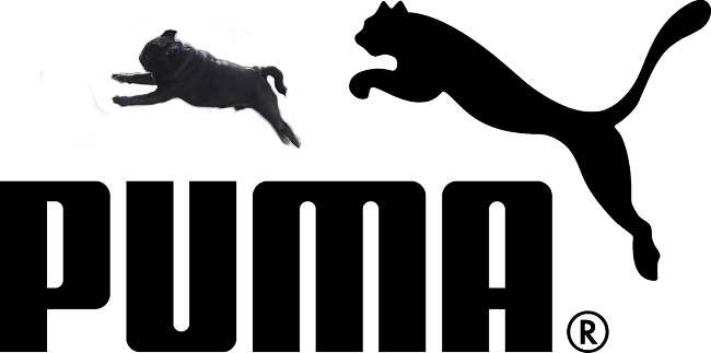 puma_logoかも
