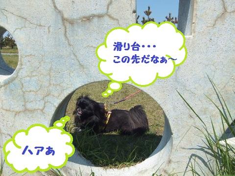 2013-04-29-03.jpg