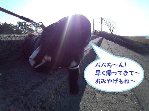 2013013109.jpg