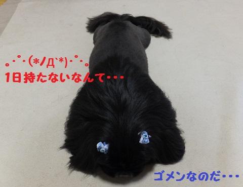 20130601mu3.jpg