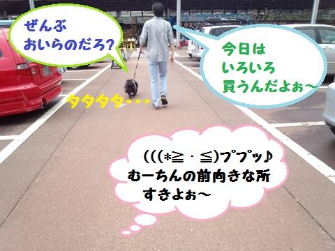 20130608mu06.jpg
