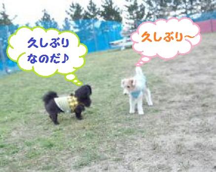DSC_0028-1.jpg