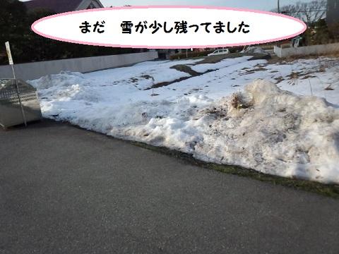 IMG_20130201_154148.jpg