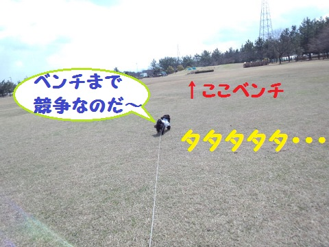 IMG_20130311_120815.jpg