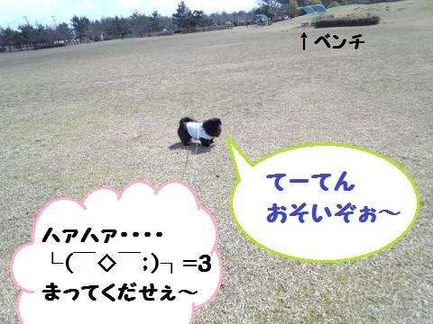 IMG_20130311_120839.jpg