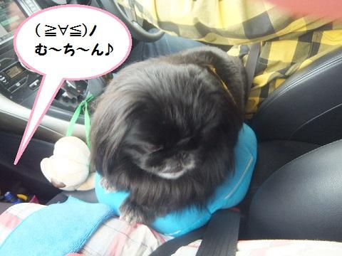 yobu1.jpg