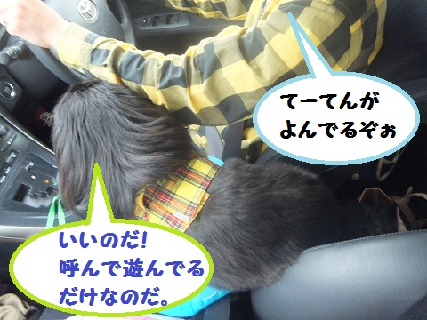 yobu3.jpg
