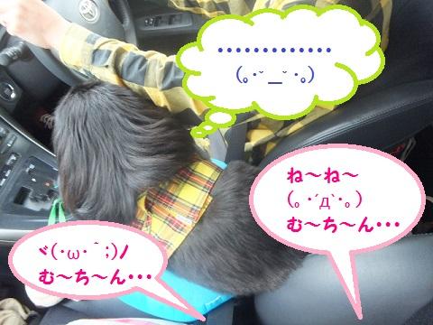 yobu5.jpg