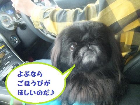 yobu6.jpg