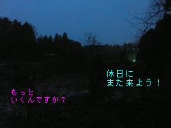印旛コース