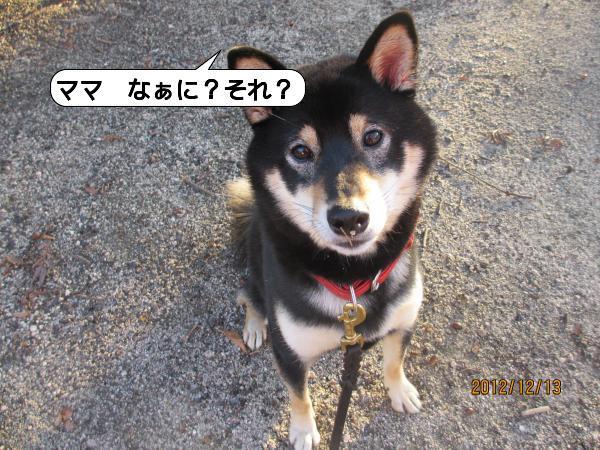 三滝13-1