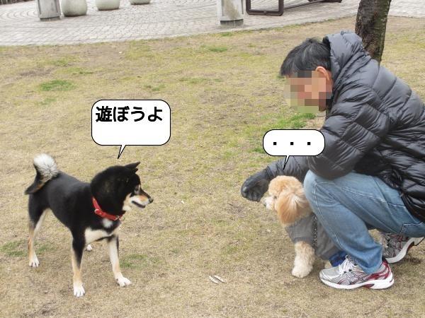 こんぴら5 (3)