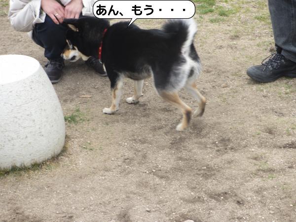 こんぴら17 (2)