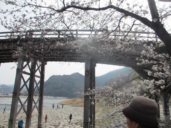 錦帯橋28