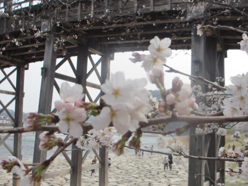 錦帯橋29