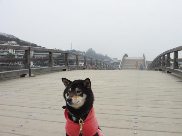 錦帯橋46