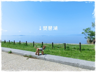 20120505blog1.jpg
