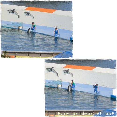 20120728blog10.jpg