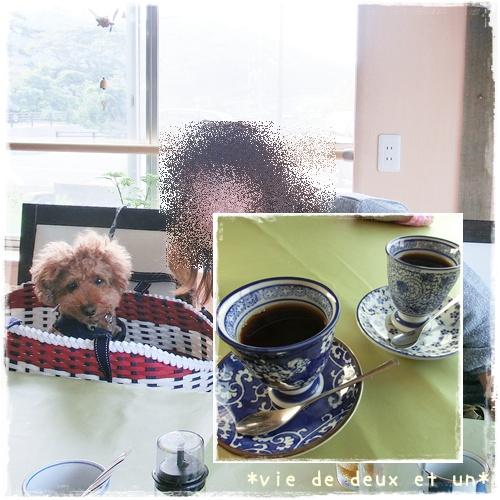 20120728blog12.jpg