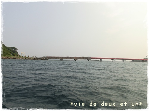20120728blog33.jpg