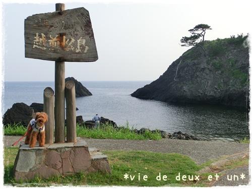 20120728blog4.jpg