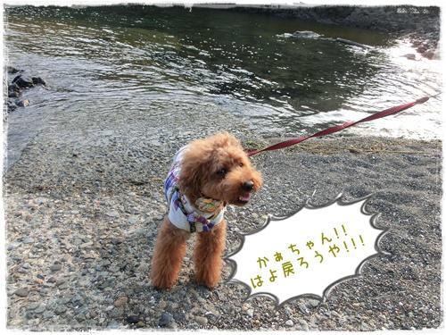 20120728blog7.jpg