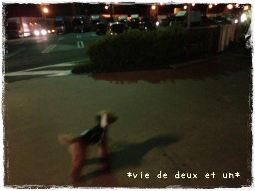 20121019blog1.jpg