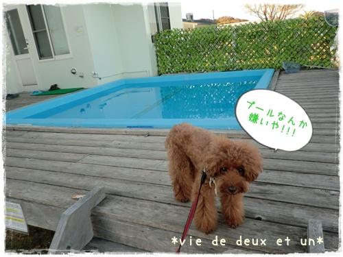 20121019blog35.jpg