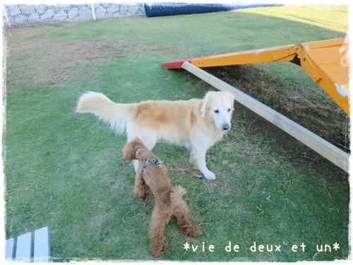 20121019blog39.jpg