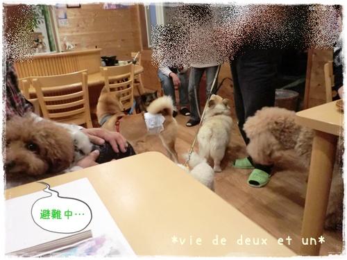 20121019blog52.jpg