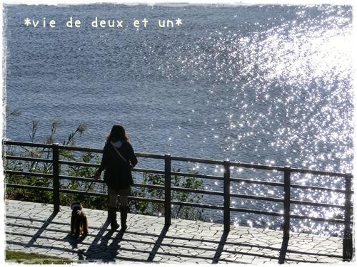 20121019blog6.jpg