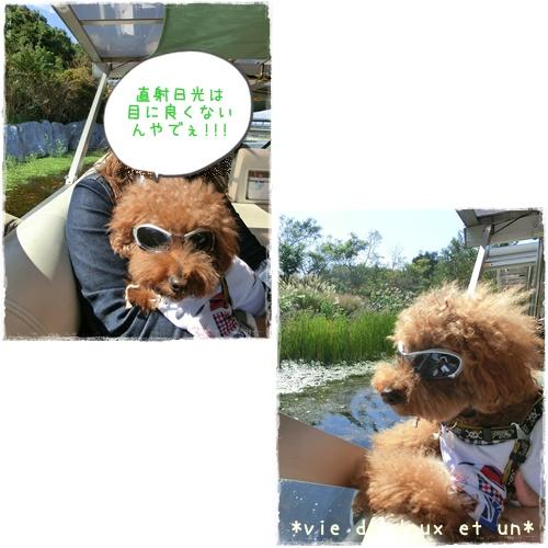 20121020blog14.jpg