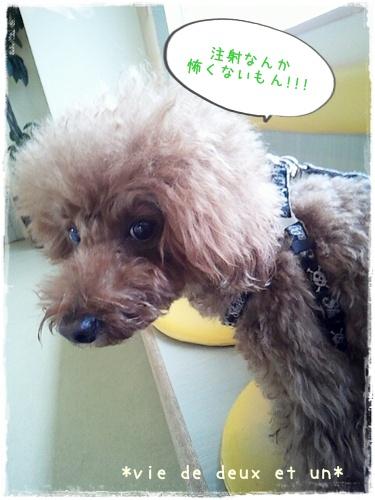 20121122blog2.jpg
