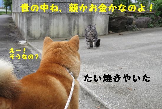 IMG_2764(1).jpg