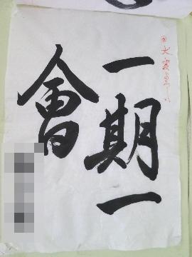 IMG_4658(1).jpg