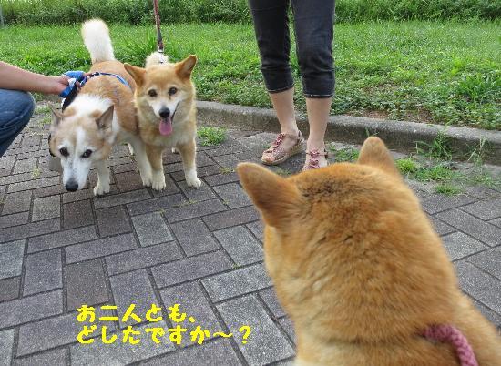 IMG_5014(1).jpg