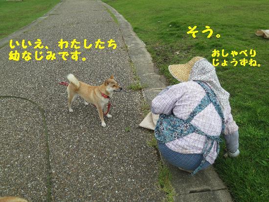 IMG_6550(2).jpg