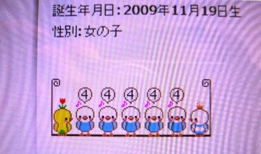 P1300347(1).jpg