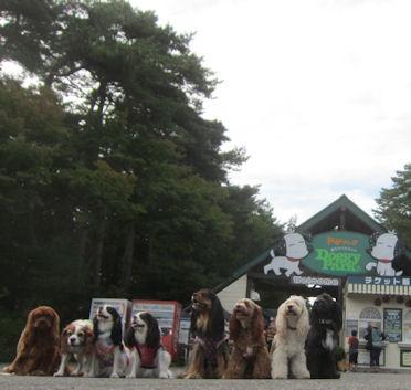 2012.9.30どぎ~