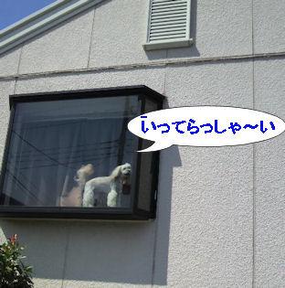 2012.9.5いってらっしゃ~い