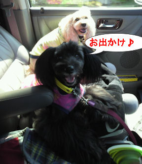2012.9.12おでかけ~