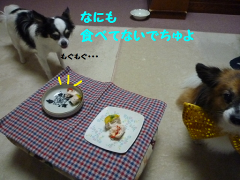20121012-16.png