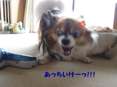 20121122-1.png