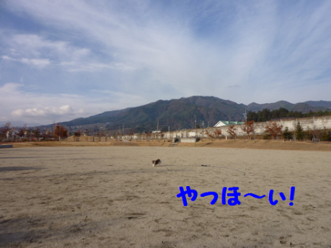 20121129-2.png