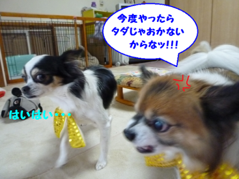 20121211-12.png