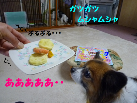 20121211-6.png