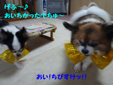 20121211-8.png