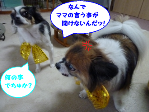 20121211-9.png